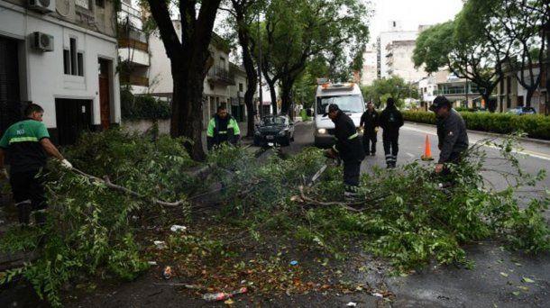 En Rosario hay calles anegadas y unos 50 reclamos por ramas y árboles caídos por el temporal.