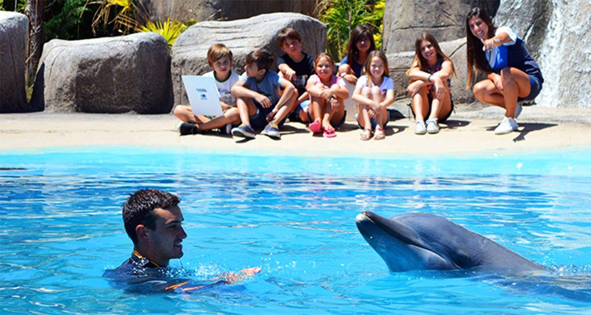 Mundo Marino, Termas y parque acuático: la experiencia completa para toda la familia
