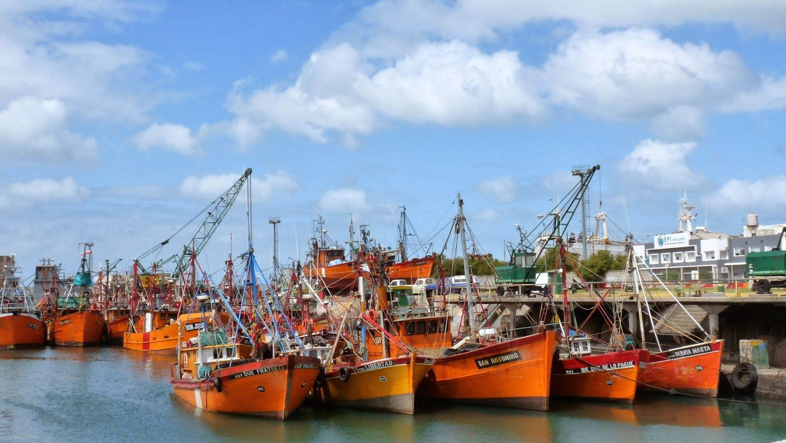 Encontraron el cuerpo de un cocinero de un barco flotando en el puerto de Mar del Plata