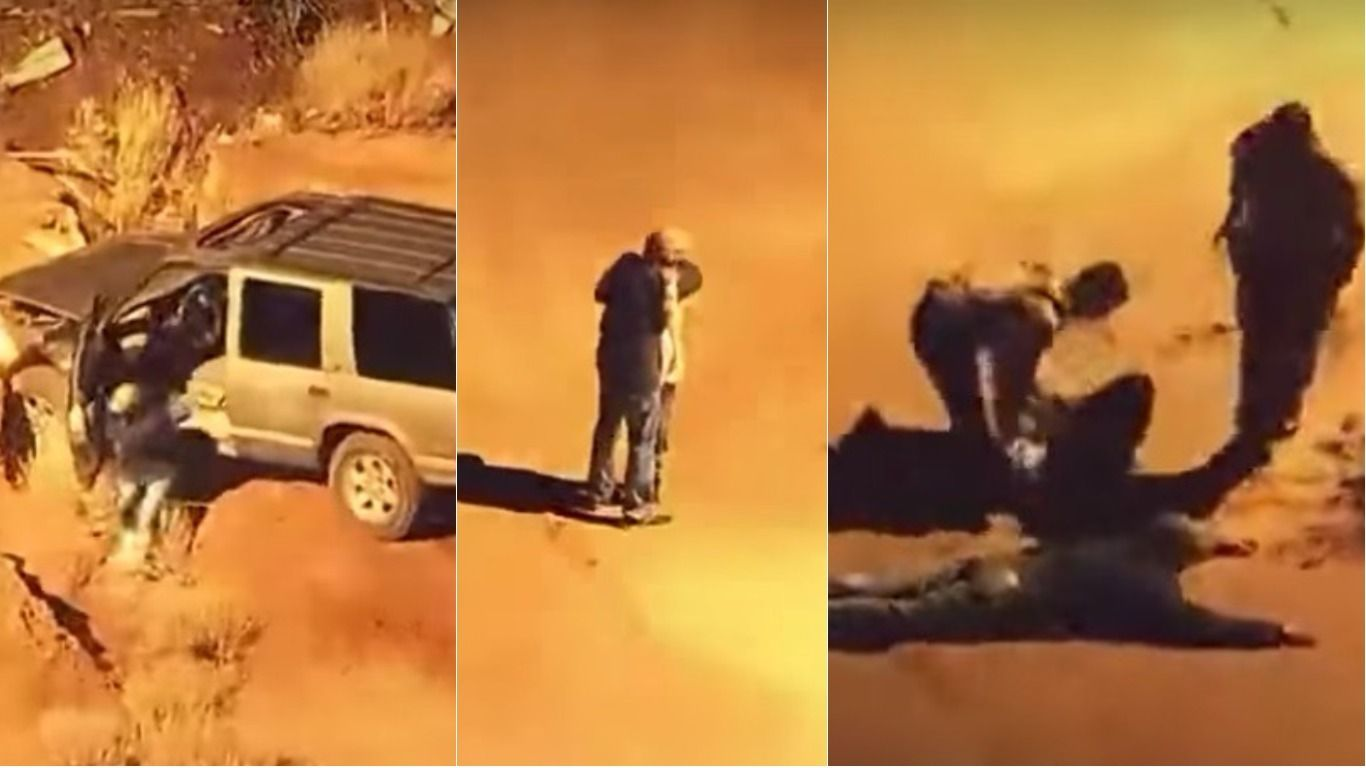 Se besaron antes que los arresten y el video se viralizó