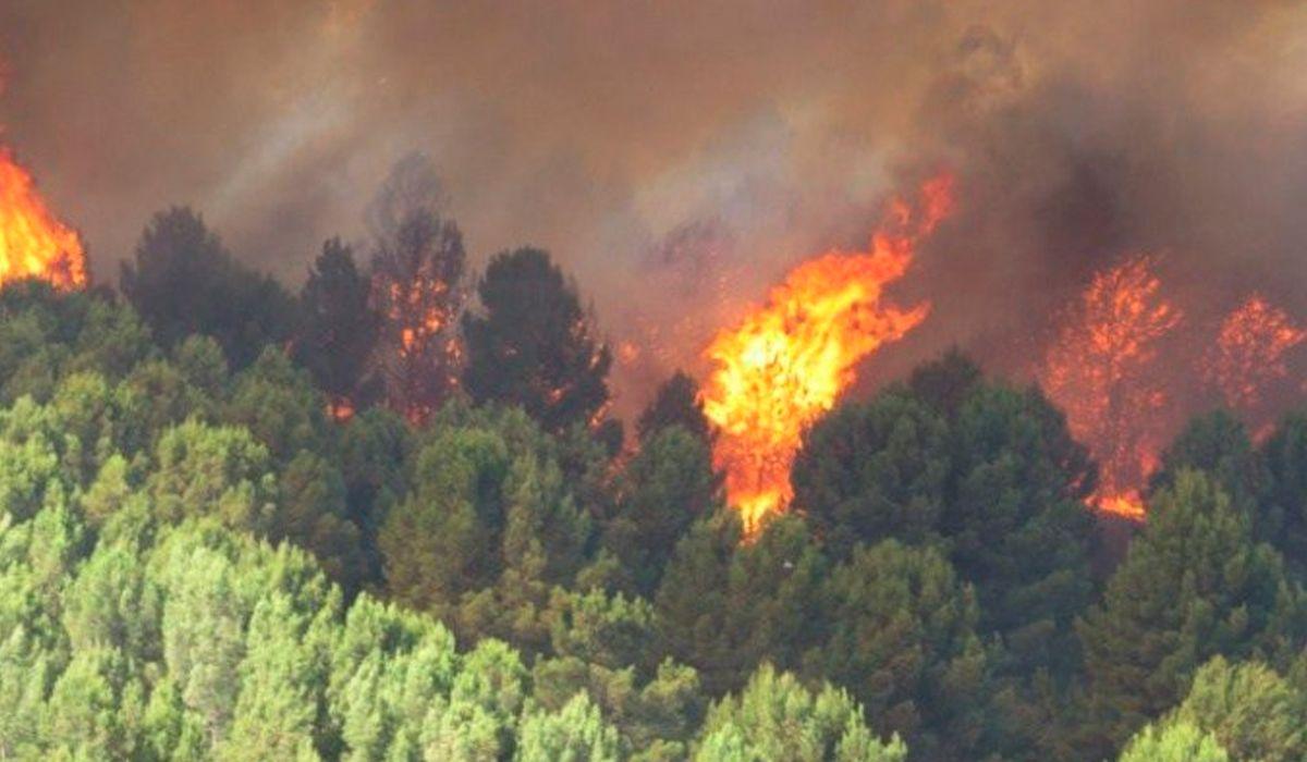 Así se incendia Sierra de la Ventana