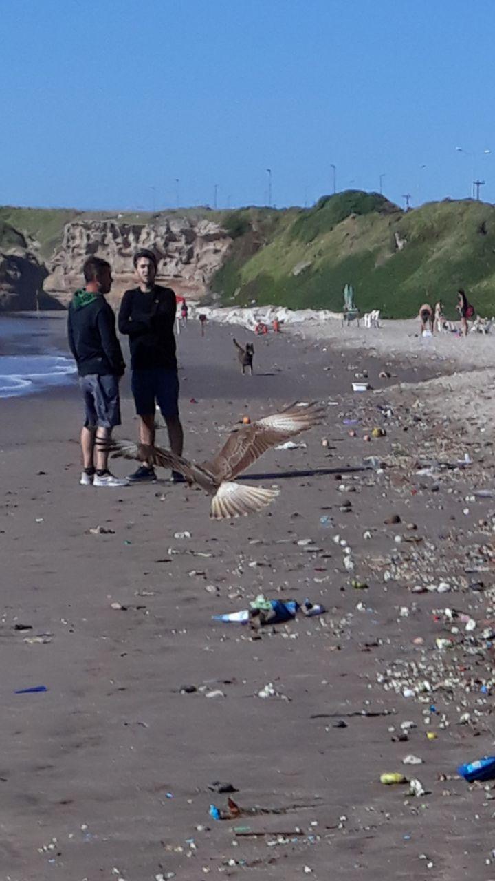 Botellas rotas, pila de basura y restos de rituales: así están las playas de las afueras de Mar del Plata