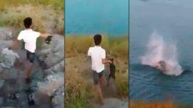 Horror: arroja a un cachorrito a un lago para que se lo coman los cocodrilos