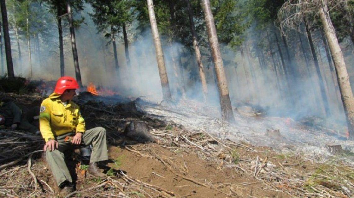 Incendio forestal en Los Repollos - Crédito: Río Negro