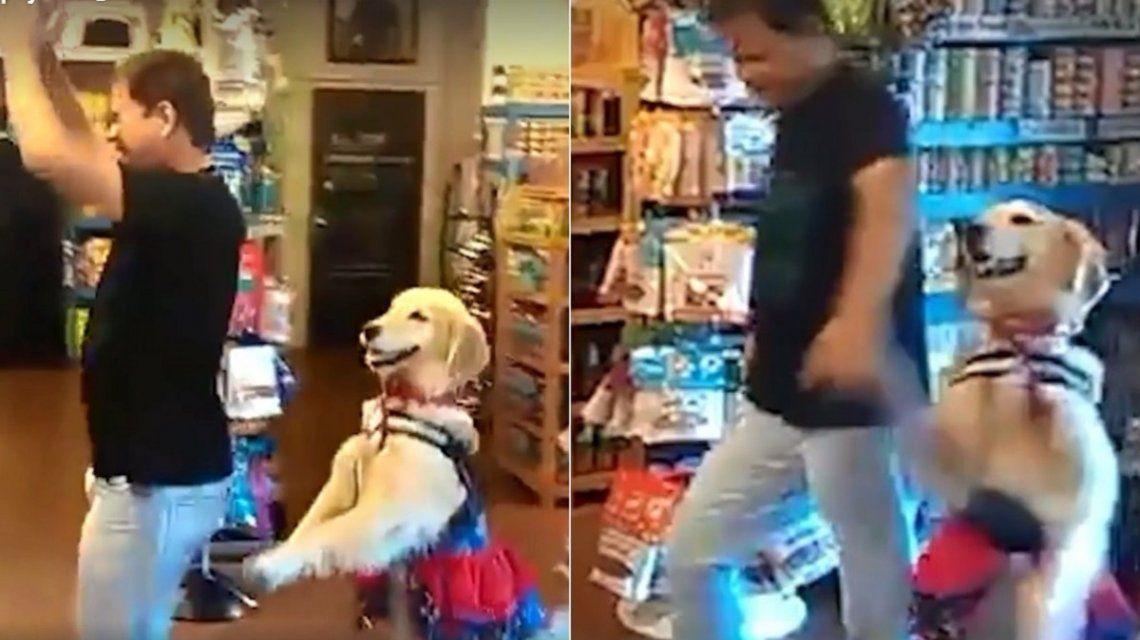El perro que baila salsa