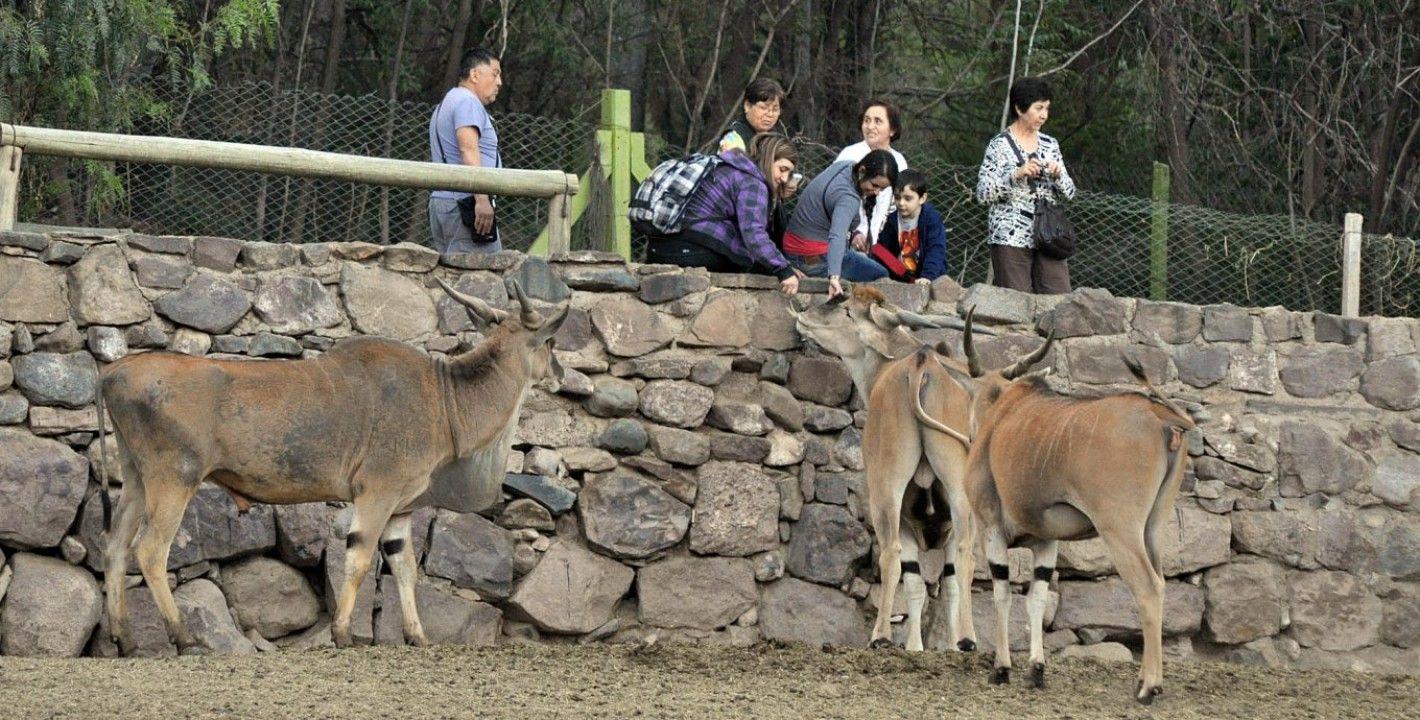 Mendoza: el ex zoo abre la inscripción para adoptar animales
