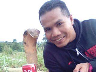 El bombero de 33 años murió mordido por una cobra
