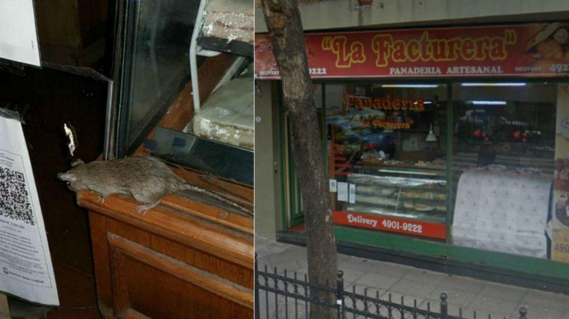 Así vieron los vecinos la vidriera de una panadería en Caballito