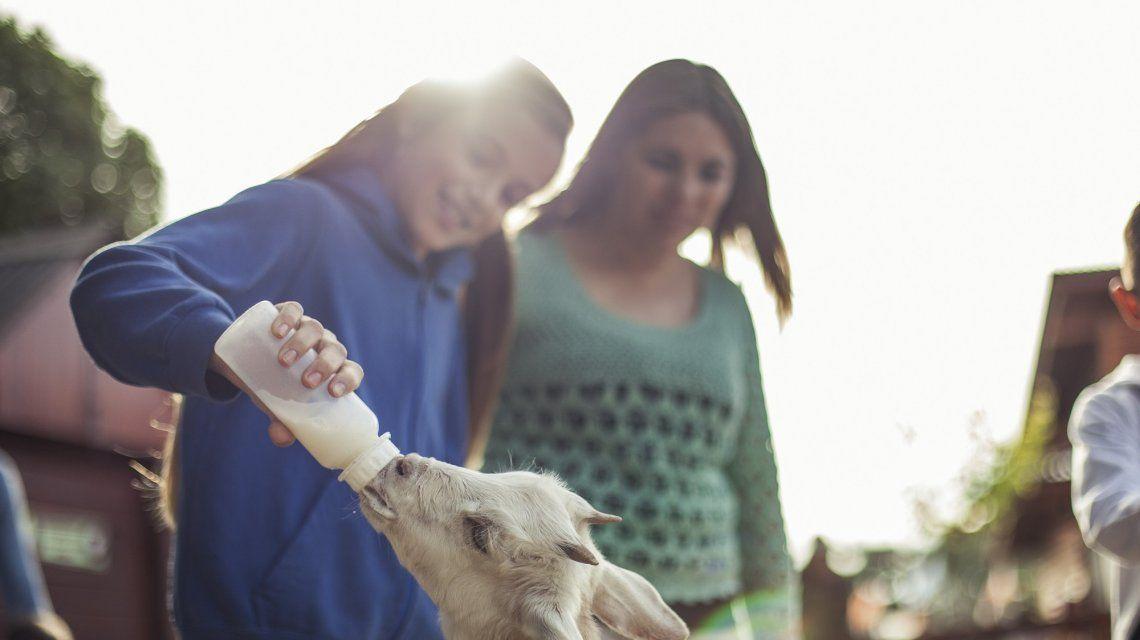 Una opción educativa y al aire libre para los chicos en Semana Santa