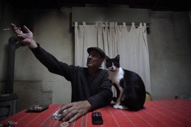 <strong>Juan Carlos Cerrudo dice haber visto un león suelto en La Plata.</strong>