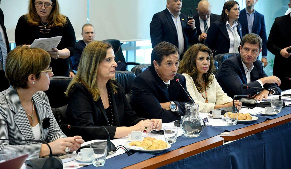 Legalización del aborto: Diputados sacará dictamen este martes para habilitar el histórico debate
