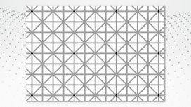 Desafío viral: ¿por qué no podés ver los 12 puntos al mismo tiempo?