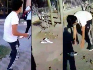 escandalo en san juan por el video de un grupo de estudiantes que maltratan a una paloma