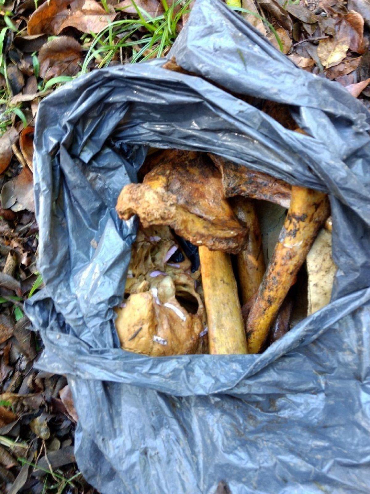 Encontraron huesos humanos en una bolsa de basura en City Bell
