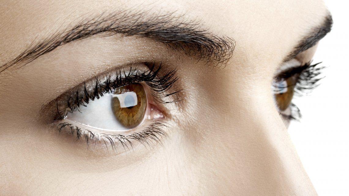 La pregunta que pocos pueden responder: ¿para qué sirven las cejas?
