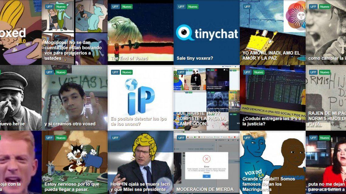 Investigan a los usuarios de una red social por hostigamiento y acoso