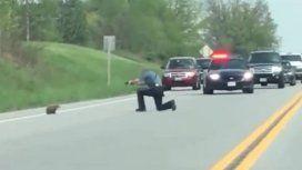 El policía le disparó dos veces a la marmota