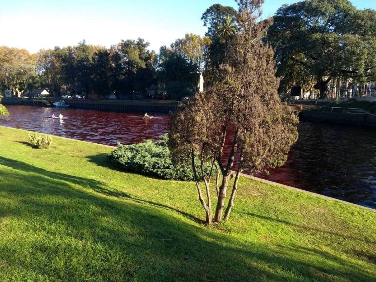 Agua roja en el Delta de Tigre - Crédito:@AgusAlvareeez