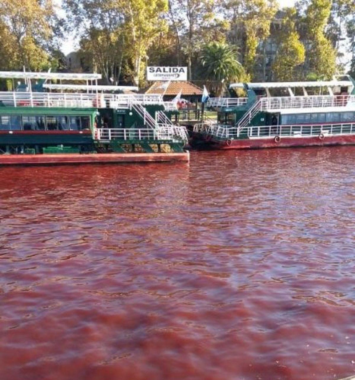 Agua roja en el Delta de Tigre - Crédito: @Stefy_duarte99