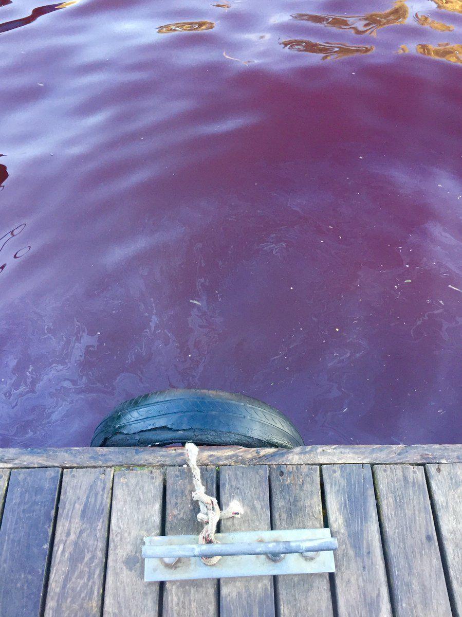 Agua roja en el Delta de Tigre - Crédito: @CorregidorEl