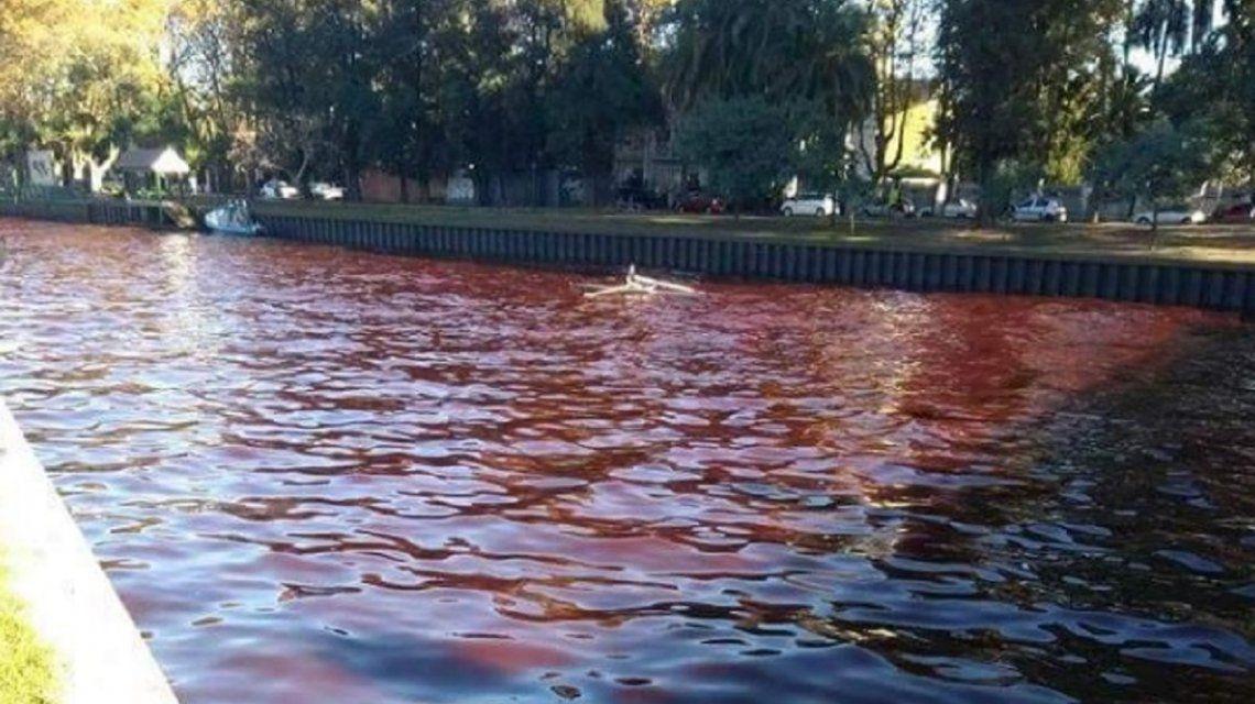 Agua roja en el Delta de Tigre - Crédito: @AgusAlvareeez