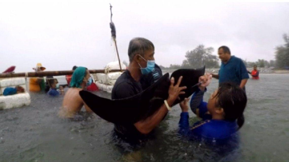 Tailandia: una ballena murió después de tragarse 80 bolsas de plástico