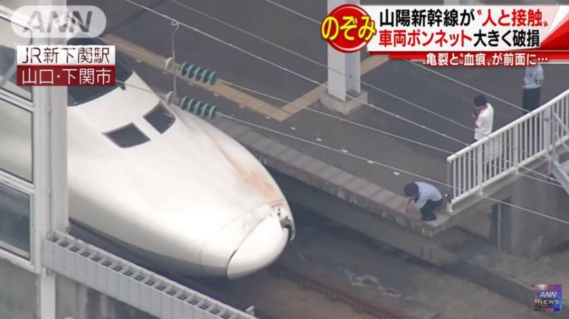 El conductor tardó en reportar el accidente porque pensó que se había llevado puesto a un animal pequeño