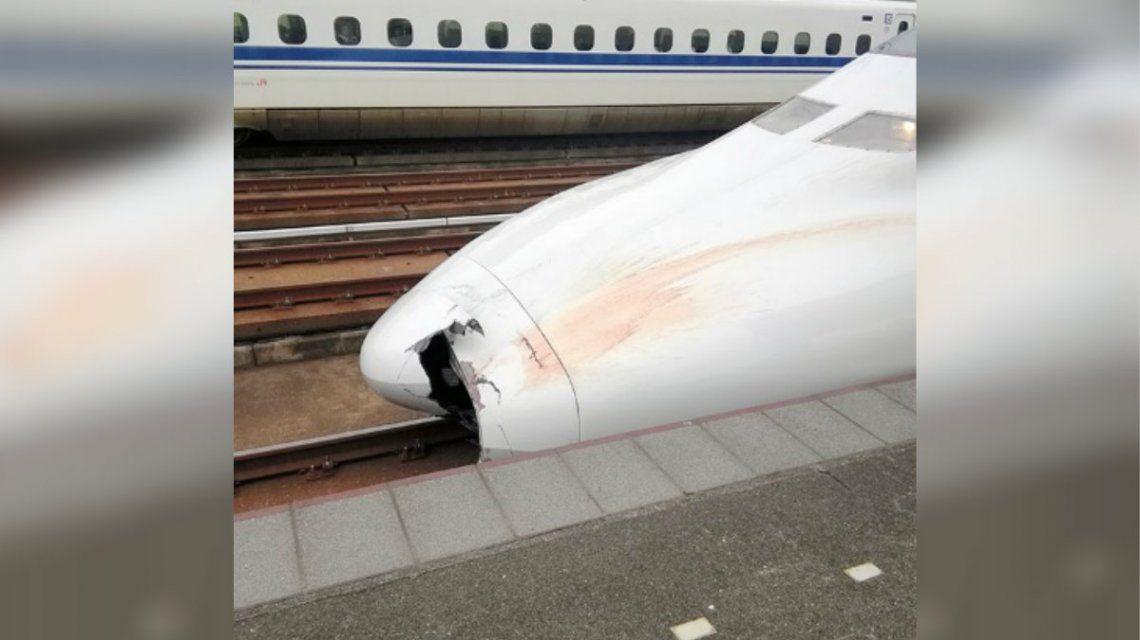 Las autoridades encontraron los restos de un hombre de 52 años en la trompa del tren bala