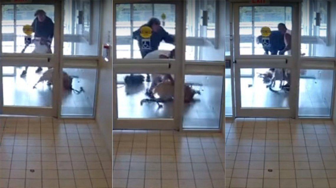 Un pitbull mató a otro perro en segundos