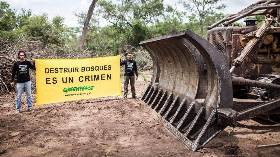Greenpeace denunció al primo del jefe de Gabinete por desmontes en Salta