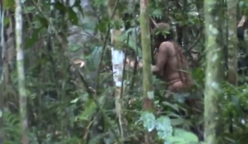 Es la primera vez que logran grabar tan bien la presencia del último sobreviviente de una tribu del Amazonas