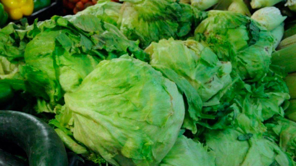 Es el momento de comprar verduras de hojas verdes