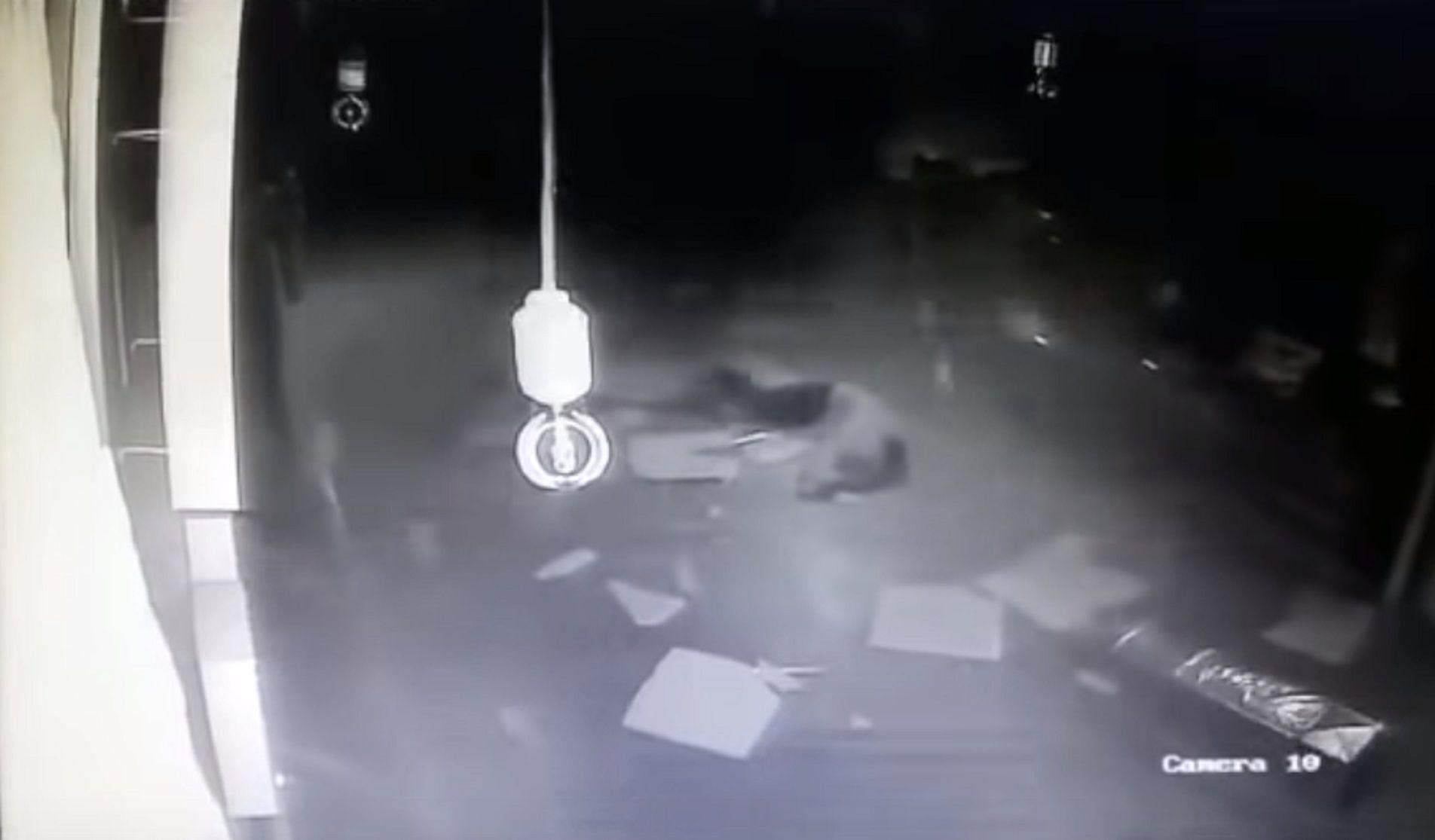 VIDEO: Quería entrar a robar en una feria y cayó de cabeza