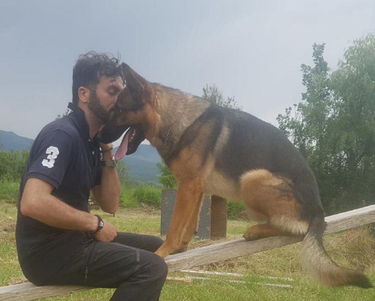 Envenenaron al perro héroe que rescató varias personas en el terremoto de Italia