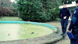 Conmoción en Pilar por la aparición de ocho perros muertos en una pileta