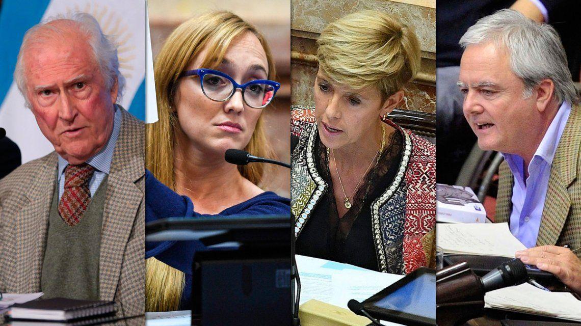Por edad, sexo, región y partido: la postura de cada senador sobre el aborto