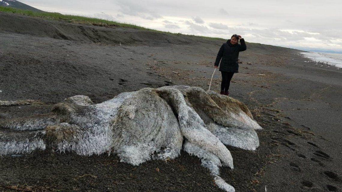 La mujer que encontró el cadáver en la playa no logró especificar qué es