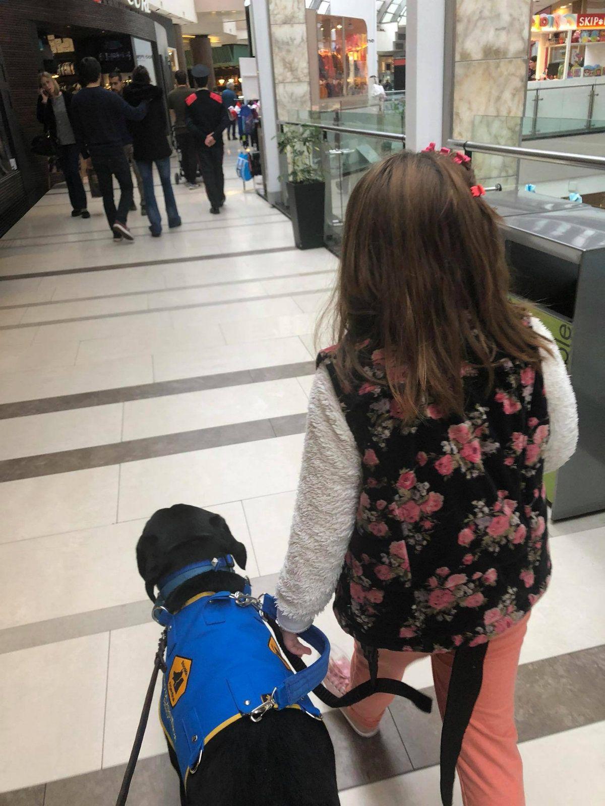 El perro de Lola siempre anda con su peto para que lo identifiquen como animal de servicio