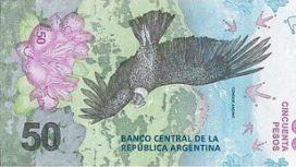 El cóndor patagónico, el nuevo protagonista de los billetes de 50 pesos