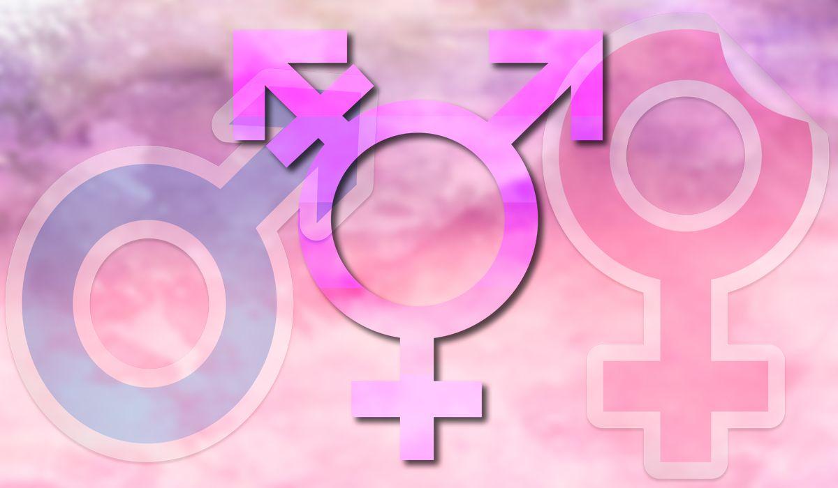 Diverso: el tercer sexo que ya se debate en Alemania