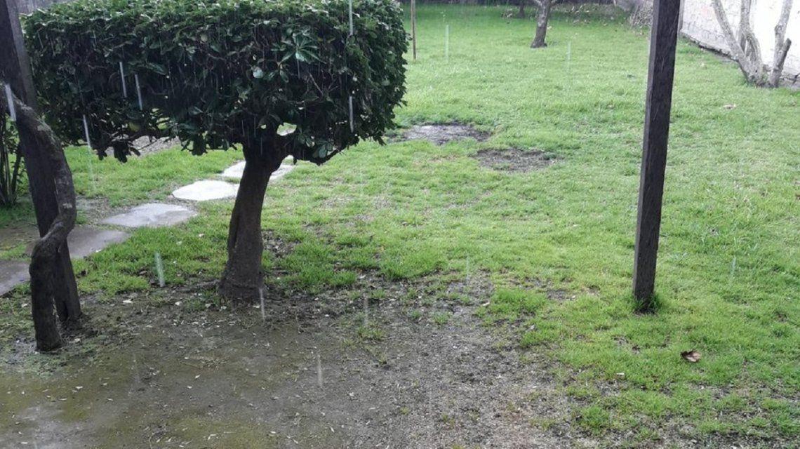 Graupel en provincia de Buenos Aires - Crédito:@AiroldiLeandro