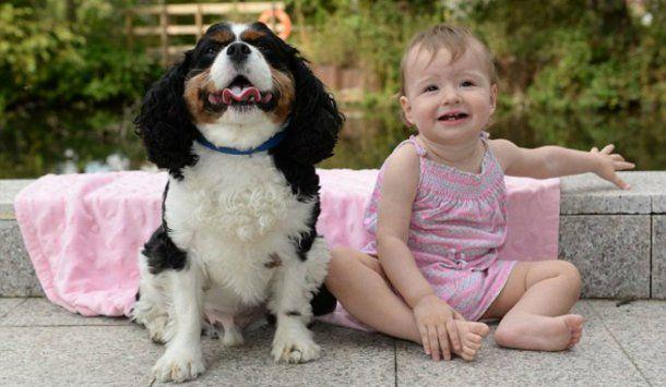 Chloe sobrevivió gracias a la reacción de la mascota familiar