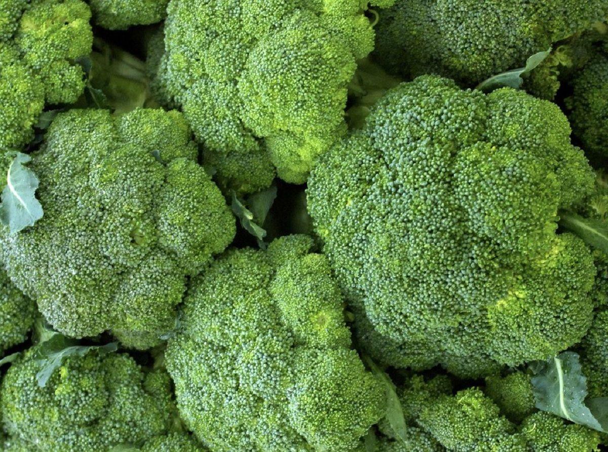 La Anmat prohibió la venta de verduras congeladas por la presencia de una peligrosa bacteria