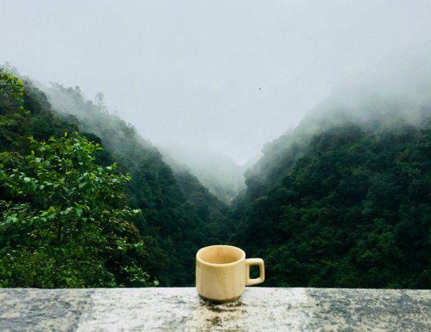 América Latina está frente a una crisis cafetera
