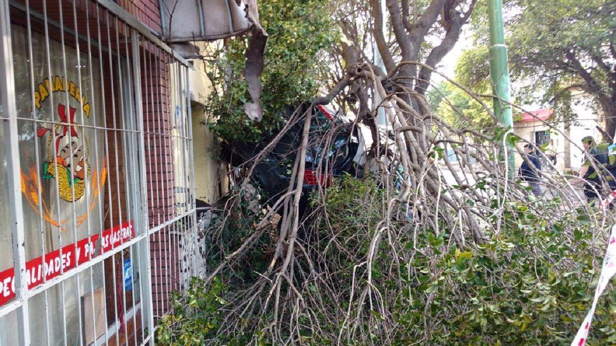 Antes de impactar contra la vivienda derribó un árbol