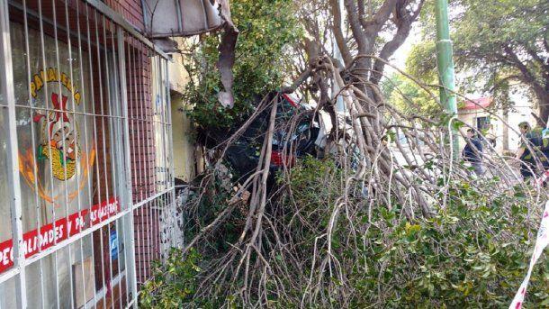 Antes de impactar contra la vivienda derribó un árbol<br>