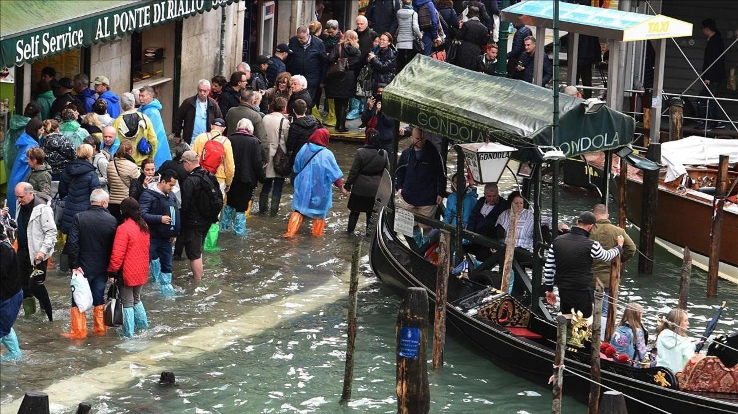 Venecia, bajo el agua: conmovedoras imágenes de una ciudad sacudida