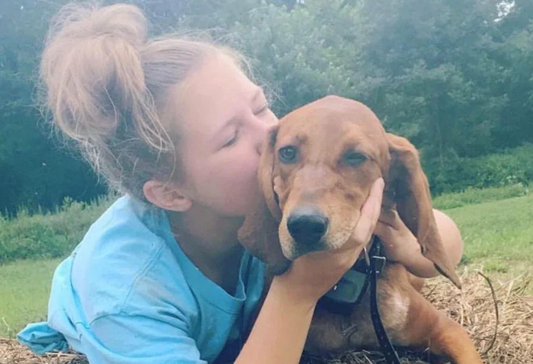 Una nena quiso salvar a su perro, pero ambos murieron atropellados