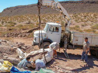 encuentran en neuquen una nueva especie de dinosaurio de hace 110 millones de anos