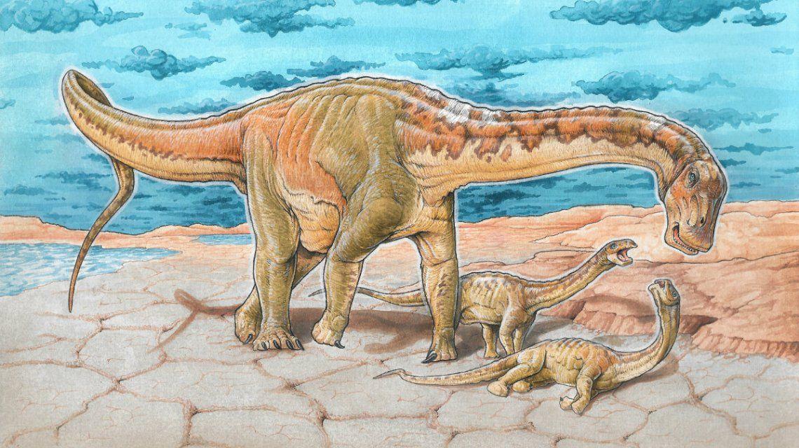 Encuentran en Neuquén una nueva especie de dinosaurio de hace 110 millones de años